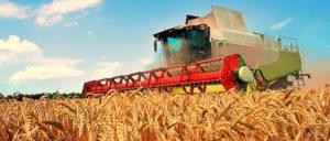 С 1 января 2019 года будет назначаться надбавка к пенсии лицам, проработавшим в сельском хозяйстве не менее 30 лет