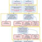 Обжалование судебных актов в гражданском процессе